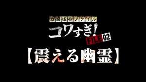 FILE-02【震える幽霊】('12) in 好きな戦慄怪奇ファイル コワすぎ!BEST5 by t_kaketaka