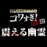 FILE-02【震える幽霊】('12) in 好きな戦慄怪奇ファイル コワすぎ! by t_kaketaka